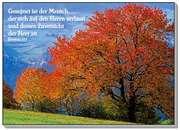 Postkarten: Gesegnet ist der Mensch, 12 Stück